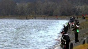 14 Марта 2014 року відбувся чемпіонат донецької області з ловлі спінінгом з берега