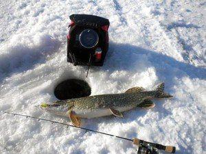 Ехолот для різного роду риболовлі
