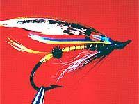 Joch scott -шотландскій наїзник. Класична муха