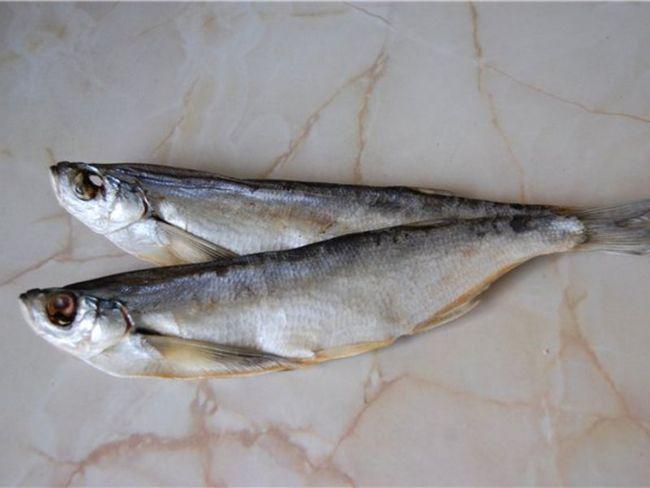 Як виглядає риба чехоня