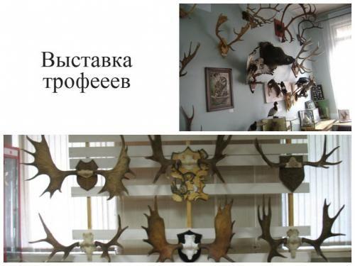 Виставка трофеїв - спосіб показати себе як мисливця, і побачити - чого варті інші