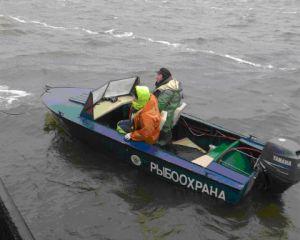 Красноярські браконьєри позбулися спійманої риби