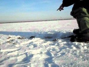 Ловля чебака взимку