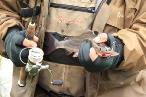 Що треба для вдалої риболовлі