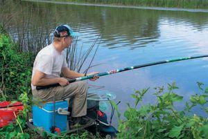 Ловля карася влітку на поплавкову вудку