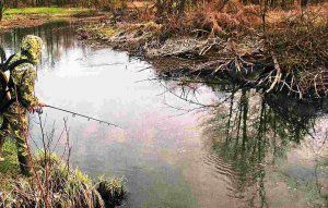 Ловля на малих річках