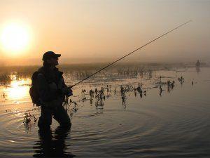 Ловля на мілководді