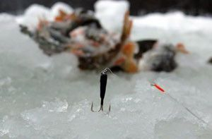 Ловля окуня взимку - корисні відео