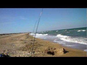 Ловля пеленгаса на азовському морі