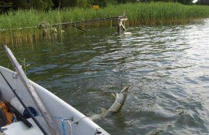 Ловля риби на доріжку