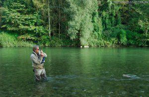 Ловля риби в стоячій воді