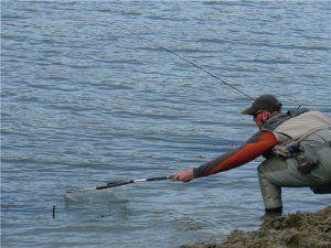 Ловля судака з берега