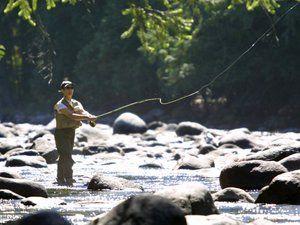 Особливості способів лову риби жереха