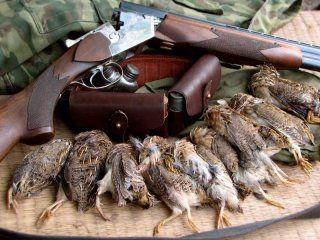 Наші вдалі полювання