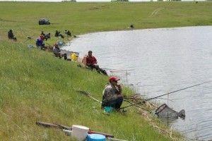 На алтаї пройшли змагання «кльова рибалка-2014»