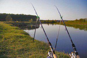 Сумщина, змагання з фідерної ловлі 29 червня