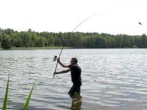 Початківцям рибалкам: фідерне вудилище