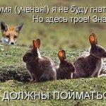 Невелика порція мисливського та рибальського гумору до свята