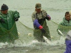 Оновлення правил рибальства росії