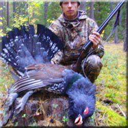 Полювання на глухаря, полювання на тетерева, полювання на рябчика, полювання на вальдшнепа