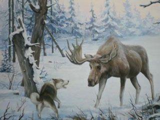 Полювання на лося з лайкою