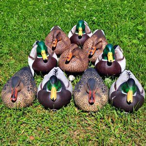 Опудала качок, які застосовуються для полювання