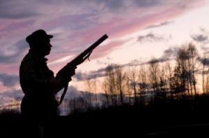Як стріляти в вальдшнепа на тязі