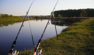Фідерні вудилища на літній рибалці