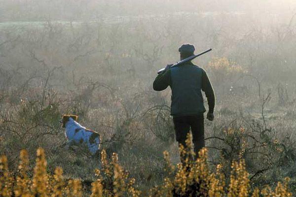 Осіннє полювання 2017, відкриття осіннього полювання 2017, терміни осіннього сезону полювання