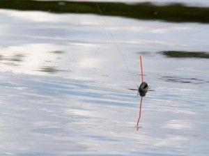Оснащення поплавцевою вудки на карася - якою вона має бути? Відео