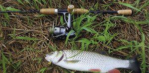 Ловля різної риби спінінгом