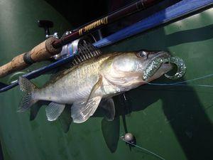 Рибальські методи лову