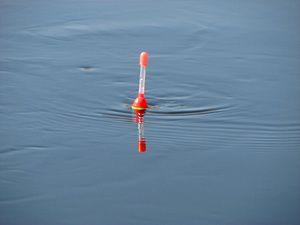 Особливості відвантаження поплавка: підбираємо грузило правильно
