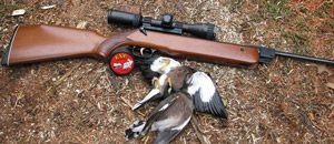 Пневматична зброя для полювання