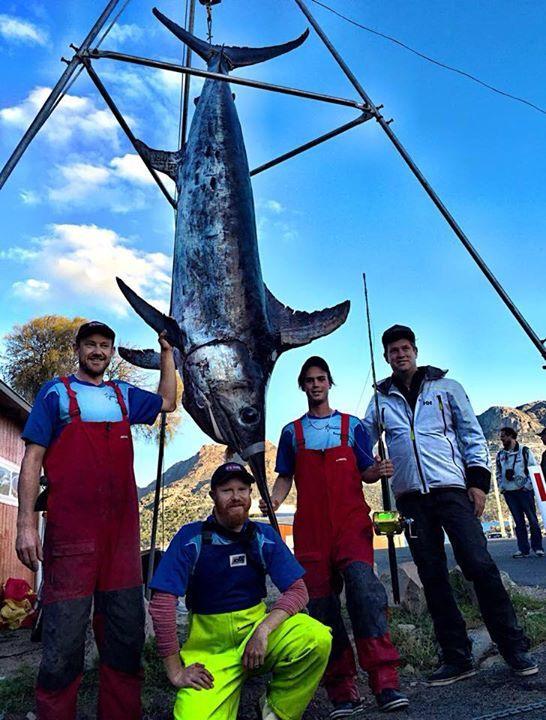 Підліток побив рекорд з ловлі меч-риби фото 2