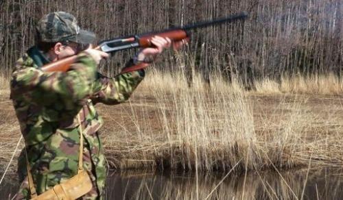 Правила влучного мисливця - як точно прицілюватися і стріляти в звіра
