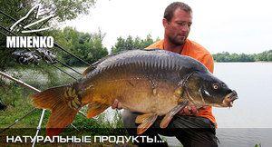 Підгодовування міненко - запорука успішної риболовлі