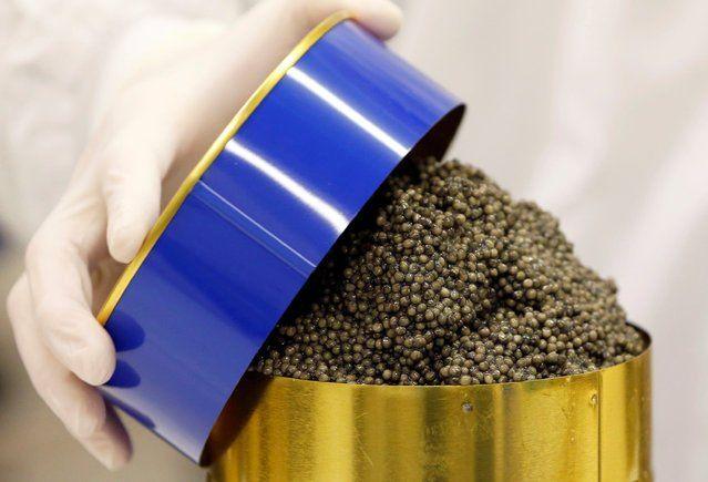 Виробництво чорної ікри