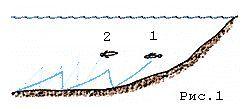 Різновиди поролонових рибок.