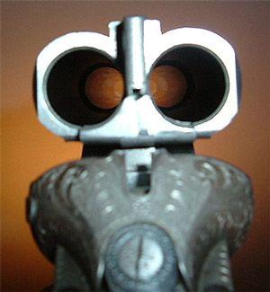 гладкоствольну рушницю