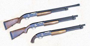 різні варіанти рушниці Бекас