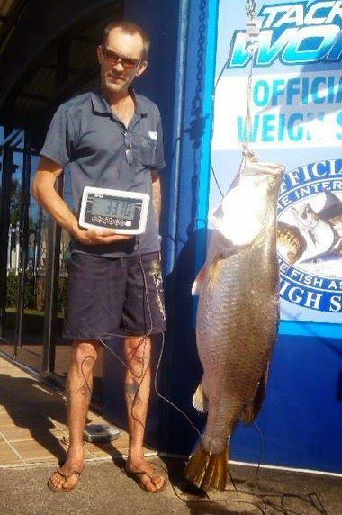Трофеї та рекорди грудневої риболовлі IGFA фото баррамунді