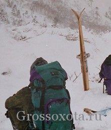 Вибираємо лижі для полювання