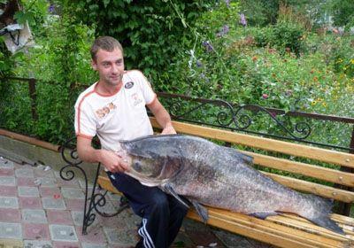 Житель тернополя зловив в сільському ставку товстолобика вагою 37 кілограм